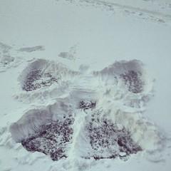 Angel courtesy of my angel. #snowday