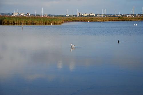 天氣晴朗時,潟湖成為一面鏡子