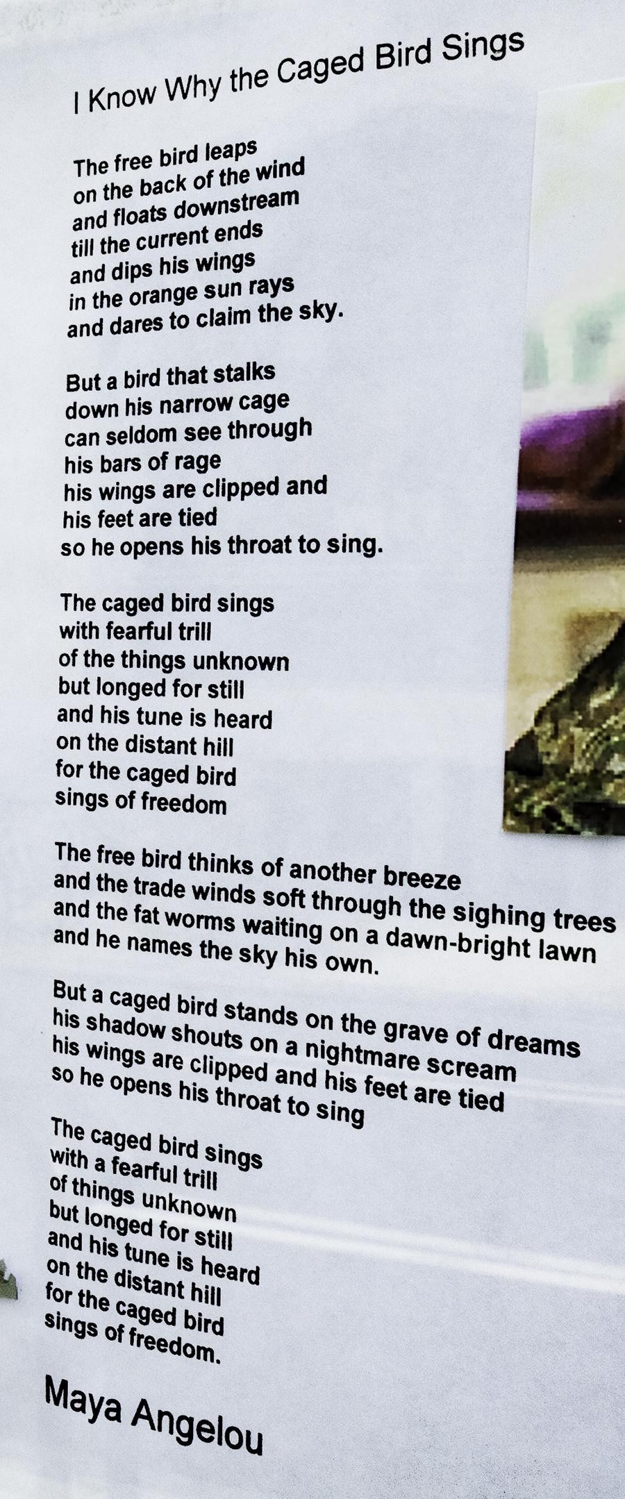 Maya-Angelou-on-door-of-Kids-on-12th--Center-City-(detail)