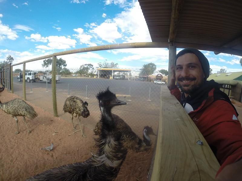 150517 Da Uluruu a Curtin spring  (131) (2000 x 1500)