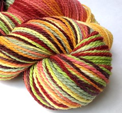"""Autumn Rainbow"" on Mountain Meadow Merino"