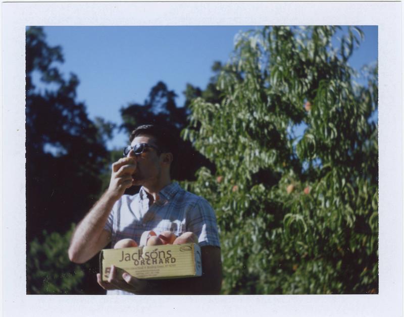 2015.07.30_ polaroid summer _lemon