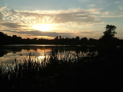 """Evening over Hillsborough Lake"","
