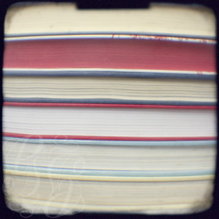 Book stripes - red