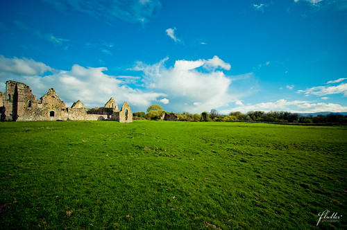 ireland abbey ruins tipperary priory athasselpriory