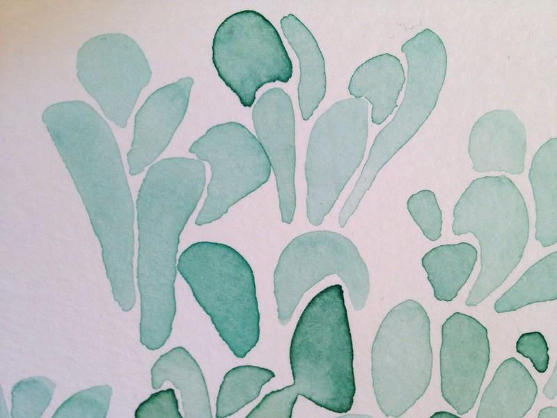 Succulents - in progress