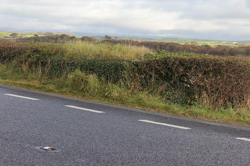 Stondin Laeth, Pencwm Mawr, Llanddeiniol