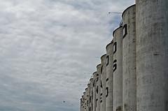 Abandoned Grain Terminal 1