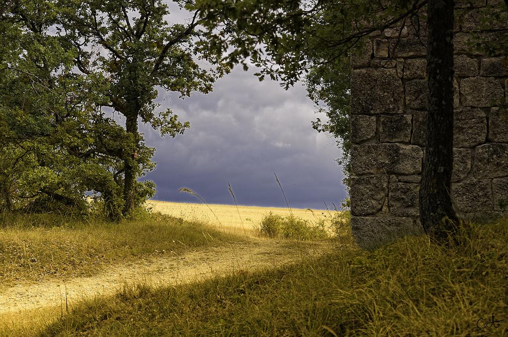 Paisaje de La Campaigne, en el país del Loira. Autor, Lain@ G fait une pause
