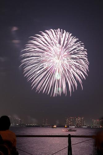 「昇小花 彩星芯 銀菊 電光浮模様」 by 田畑朝裕 東京湾大華火 2013 Tokyo Bay Grand Fireworks