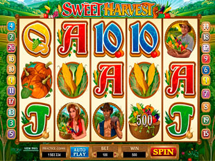 Sweet Harvest Bonus Feature