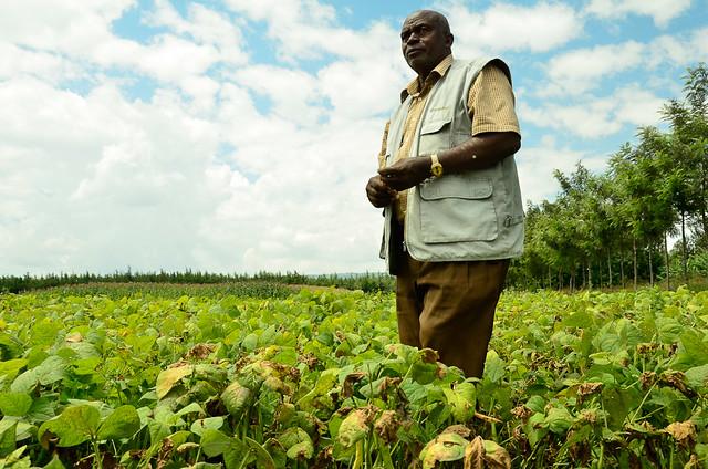 James Mwaura on his farm