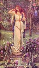 Arnemetia-celtic