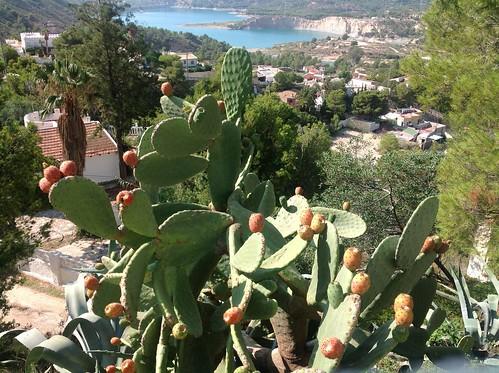 Mediterranean Landscape by Ginas Pics