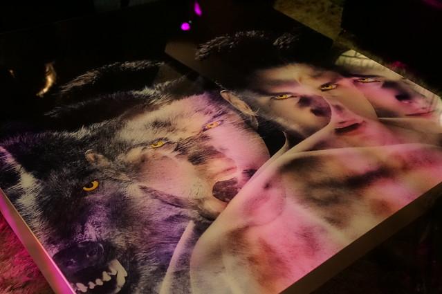 Teen Wolf VIP Fan Party!