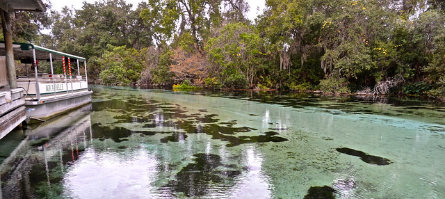weeki wachee river cruise