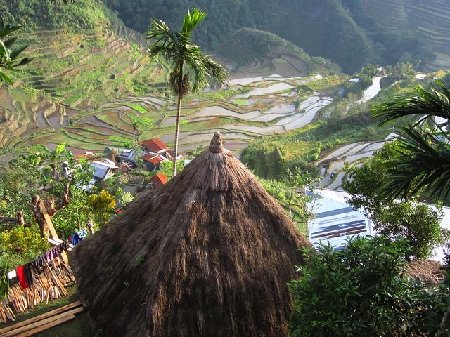 Vivienda tradicional en las terrazas de arroz de Banaue, Filipinas