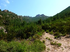Parking de la piste de Radichella : vue du départ du sentier de Capeddu