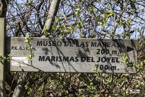 Marismas de Joyel
