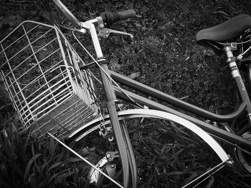 散策 [自転車] : PEN E-P3 + M.ZUIKO DIGITAL 14-42mm F3.5-5.6 II R