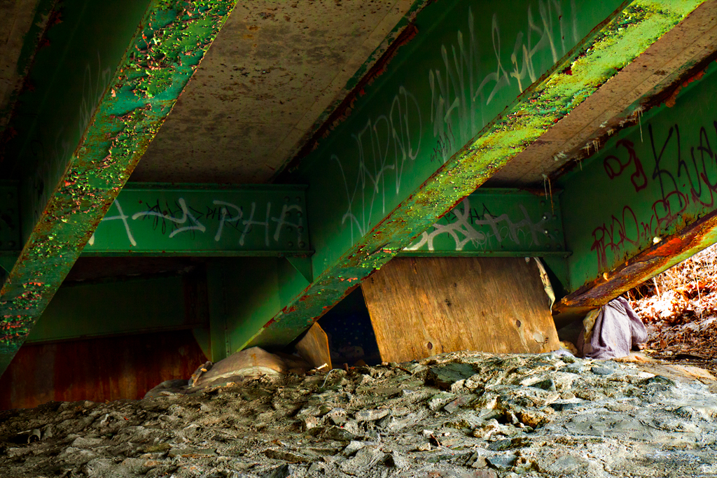 Living-arrangement-under-bridge-on-4-9-14--Feltonville-2