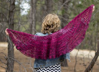 Elianette Shawl by Wendy Neal
