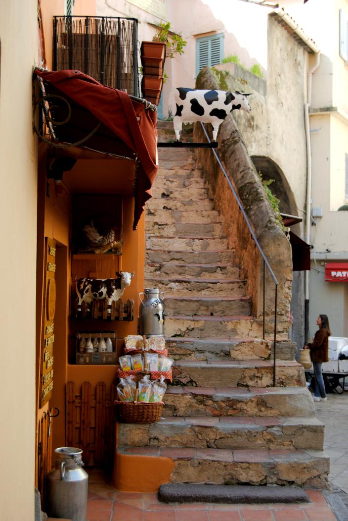 St. Tropez France (3)