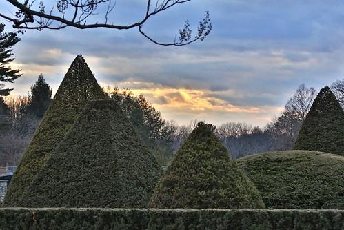 longwood gardens kennett square botanical garden park topiary sunset