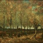 Van_Gogh_-Urville_Djasim_-_Populierenlaan_bij_Nuenen