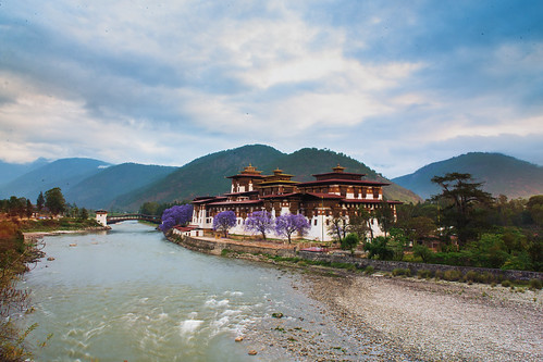 broadcast bhutan buddhist monks fortress punakha punakhadzong pungtangdechenphotrangdzong thepalaceofgreathappinessorbliss