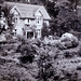 SHANKLIN CHINE 1925 HONEYMOON COTTAGE by JOHN MORGANs OLD PHOTOS.