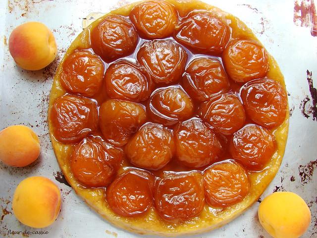 абрикосовый татэн 1