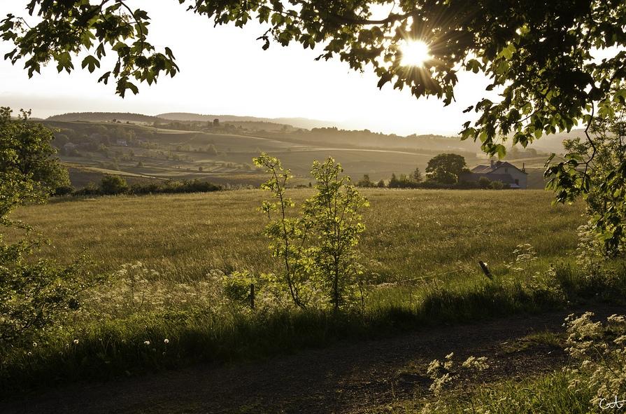 Paisaje rural del Alto Loira. Autor, Lain@ G fait une pause