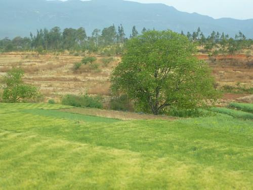 Yunnan13-Lijiang-Dali-Route (9)
