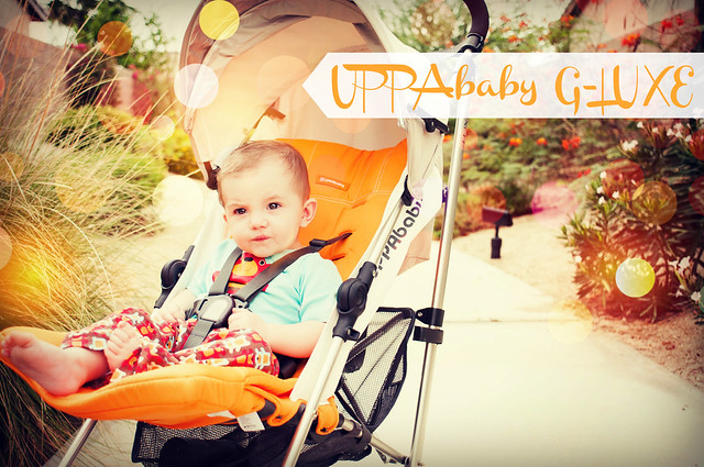 Uppababy g-luxe review in_the_know_mom