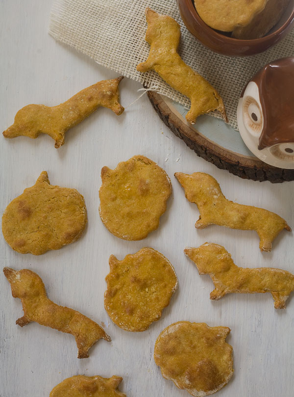 Grain-Free Pumpkin Dog Treats