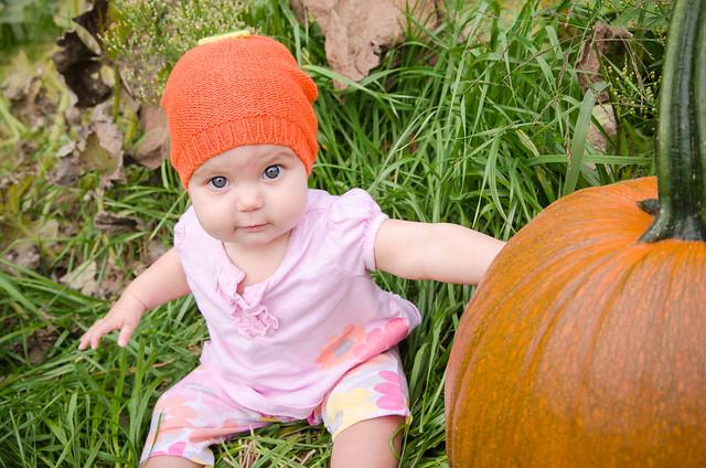 20131012-Pumpkin-Patch-0813
