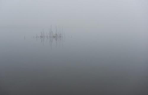 autumn fall fog landscape geotagged slovenia slovenija jesen jutro megla cerknicalake cerkniškojezero