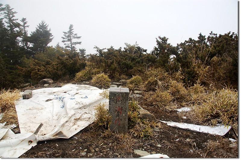 盧利拉駱山航測所森林三角點(Elev. 3175 m) 1