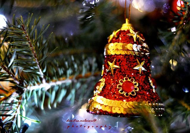 Magic Christmas...