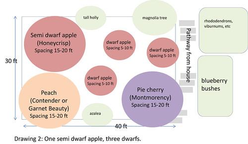 fruit tree planning 2
