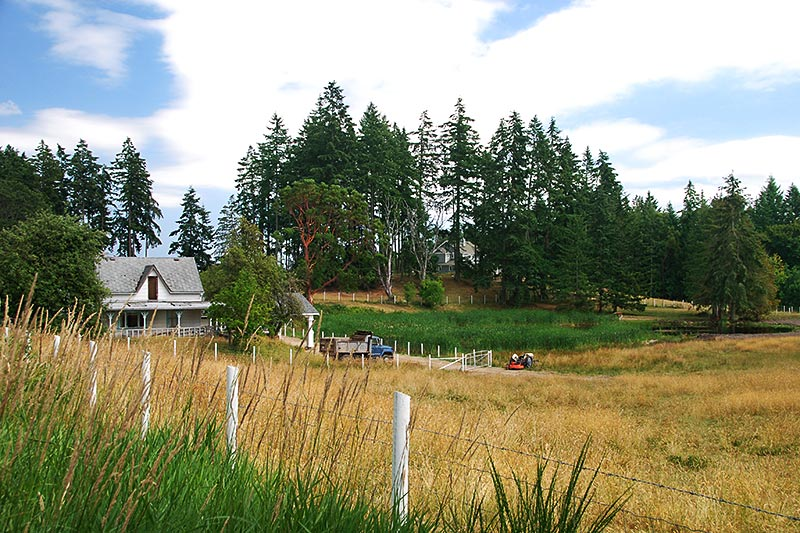 Farm in Cobble Hill, Cowichan Valley, Vancouver Island, British Columbia