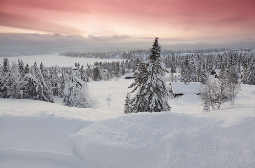 winter snow norway norge day lillehammer nordseter noorwegen crosscountryski oppland sjusjoen pwwinter