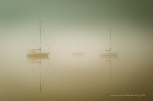 winter fog reflections landscape nc fineart nautical sailboats washingtonnc beaufortcounty washingtonnorthcarolina sepialook d700 nikond700 northcarolinaphotography northcarolinawaterways january2014 bychrismodlin northcarolinacanvasprints chrismodlin2014