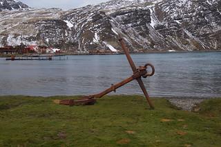430 Grytviken