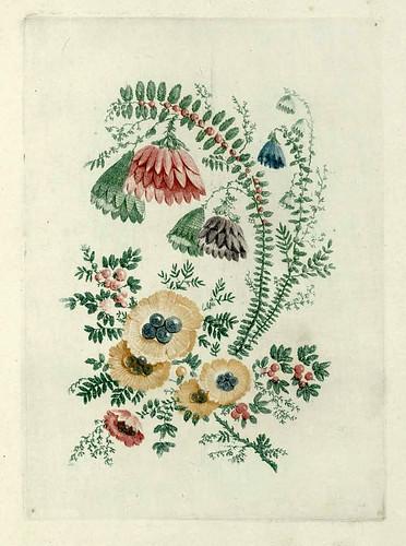 019-Flores ideales-Oeuvre gravé de Jean Pillement..1767-Vol 5- INHA