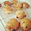 Scones!!! by nicolafred