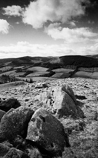 View across the Tweed Valley, From Neidpath Hll, Near Caddonfoot, Scottish Borders