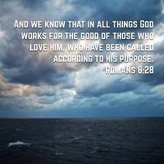 And we know that in all things God works for the good of those who love him, who have been called according to his purpose. (‭Romans‬ ‭8‬:‭28‬ NIV)