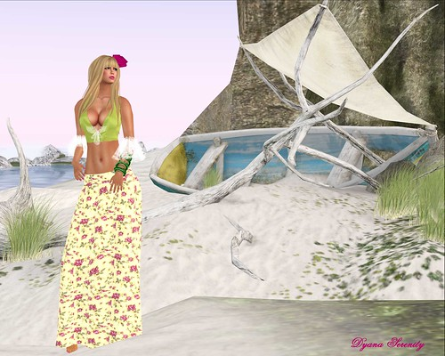 Flamenca Beach by Dyana Serenity Blogger Second Life *Thanks to all